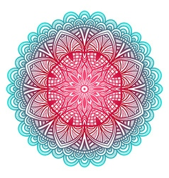 Blue and pink floral ornament circular pattern vector