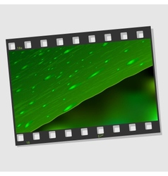 Film frame with leaf and drops vector