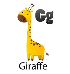 Alphabet g with giraffe vector