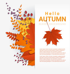 colorful autumn leaves and fruits background vector image vector image