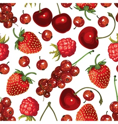 redberry pattern vector image vector image