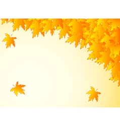 Background in warm colors with yellow maple leaves vector