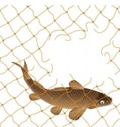Carp and nets vector