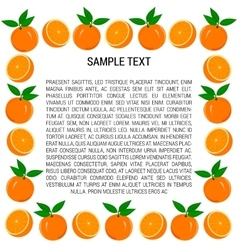 Frame of oranges and orange slices vector
