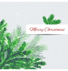 Christmas tree brunches vector image vector image