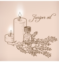 Juniper essential oil and candles vector