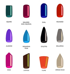 Set of different shapes of nails on white Nail vector image