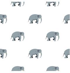 elephant pattern seamless vector image