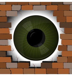 Big Eye in the gap on the wall vector image