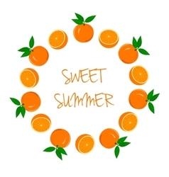 Frame of oranges and orange slices vector