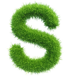 Capital letter s from grass on white vector