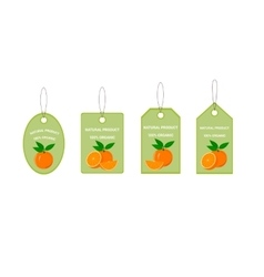 Design Labels with Juicy Orange vector image