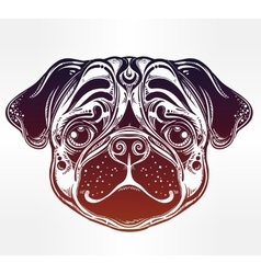 Linear style of a pug dog face vector image vector image