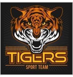 angry tiger face sport emblem vector image