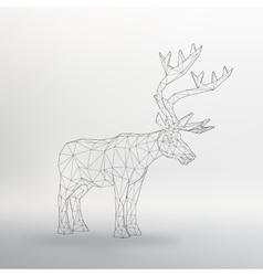 big buck The structural grid vector image