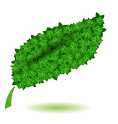Green leaves isolated symbl of nature vector