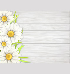 Camomile flowers on wooden desk vector