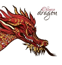 Hand Drawn Dragon vector image