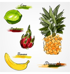 Whole fruits vector