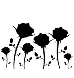 Silhouettes of flowers roses on a white background vector