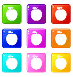 black apple set 9 vector image