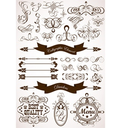 collect calligraphic vector image