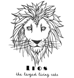 Black and white decorative hand drawn lion vector