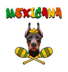 dobermann with maracas wearing in sombrero vector image vector image