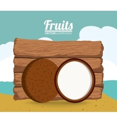 Coconut fruit and summer concept vector