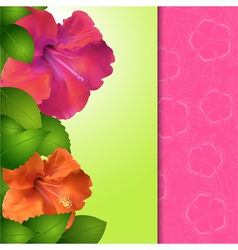 Hibiscus flower panel border vector