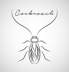 Cockroach vector image