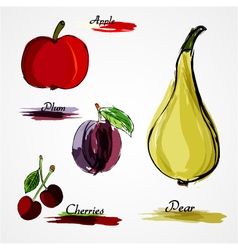 Fruits whole vector