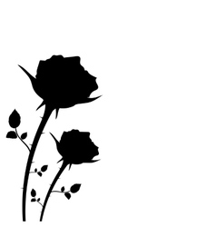 Silhouette of two roses on a white background vector
