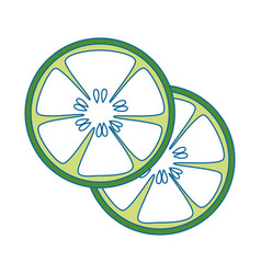 Cucumber slices icon vector