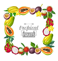 frame with exotic tropical fruits of vector image