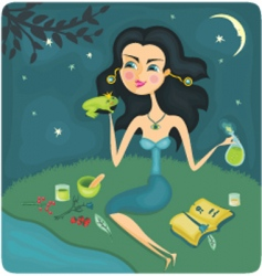 frog and queen vector image vector image