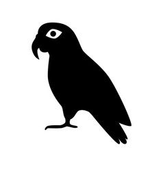 Pionus parrot silhouette icon in flat style vector