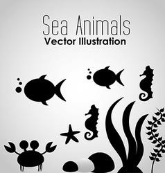 Sea animals design vector