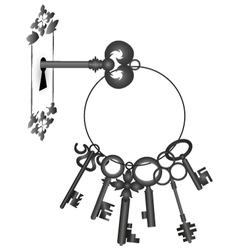 Key in the lock vector