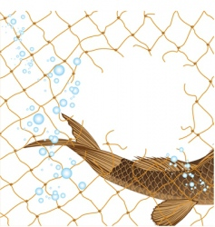 Fish in fishing nets vector