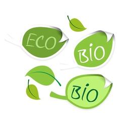 bio leaf vector image vector image