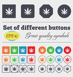 Cannabis leaf icon sign big set of colorful vector