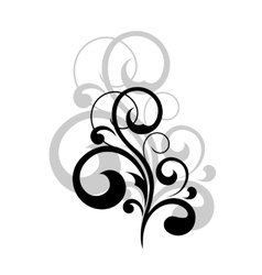 Dainty swirling calligraphic design element vector image vector image