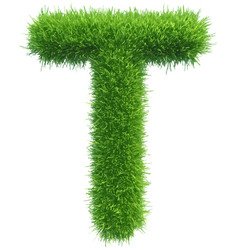Capital letter t from grass on white vector