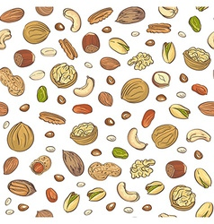 Seamless pattern hand sketched nuts on white vector