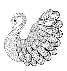 Hand drawing artistic swan for adult coloring vector