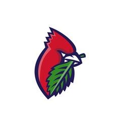Cardinal head leaf isolated retro vector