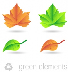 green elements vector image vector image