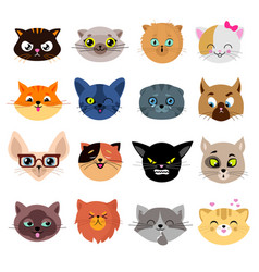 heads of cute cat characters with different vector image vector image