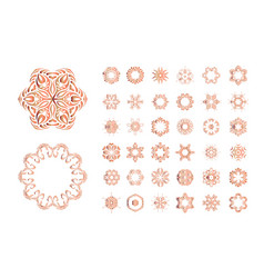 orange floral pattern isolated on white background vector image vector image